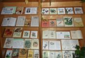 Выставка «Мои любимые зверята»